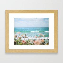 Seablush Framed Art Print