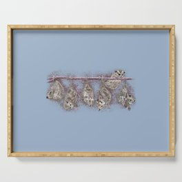 Possum Family - Blue Grey Serving Tray