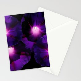 Morning Glory III Stationery Cards