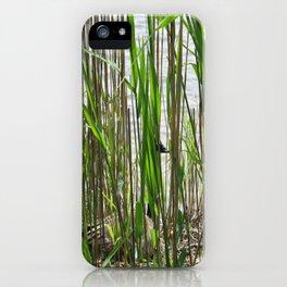 natural habitatural iPhone Case