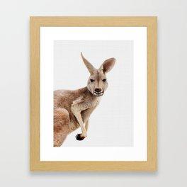 Kangaroo Print, Australian Animal Wall Art, Nursery Decor, Kids Room Poster Framed Art Print