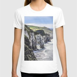 Travel to Ireland: A Castle View T-shirt