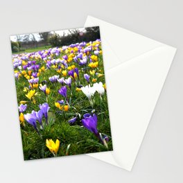 Lost in Crocuses Stationery Cards