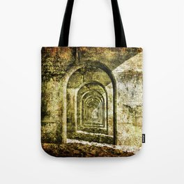 Ancient Arches Tote Bag
