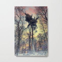 winter evening Metal Print