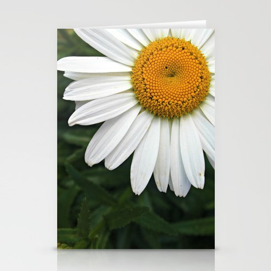 white & yellow Stationery Cards