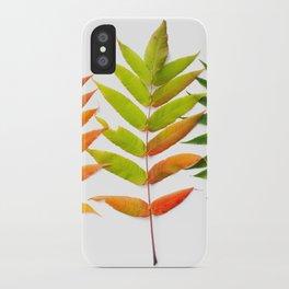 Rainbow Sumac for Autumn in Canada iPhone Case