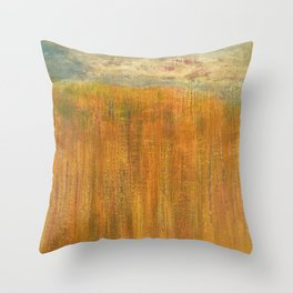 Along the trail - Old Rag, Shenandoah National Park Throw Pillow