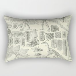 Fossil Chart Rectangular Pillow