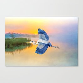 Great Blue Heron at Sunset Canvas Print