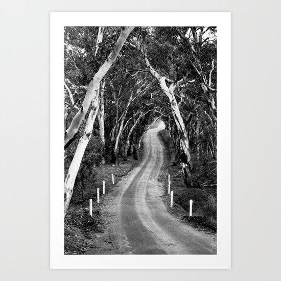Winding Road - Barossa Valley, South Australia Art Print