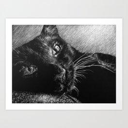 HERSCHEL THE CAT Art Print