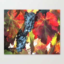 Harvest Time Colorful Grape Leaves Canvas Print