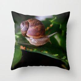 Snail #1 | Macro photography | Nature Throw Pillow