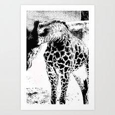Black n White Giraffe Art Print