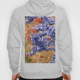 SOUND of SPRING Hoody