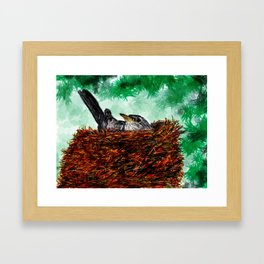 Robin in a nest Framed Art Print