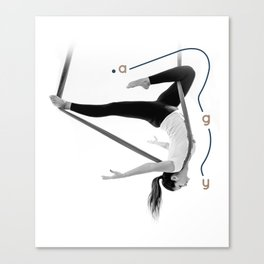 AntiGravity Robin Hood pose Canvas Print