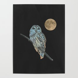 Owl, See the Moon (sq) Poster