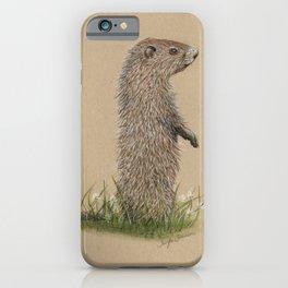 Juvenile Woodchuck iPhone Case