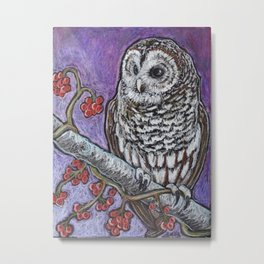 Barred Owl and Berries Metal Print