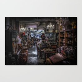 Looking for Something? Canvas Print