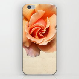 Rose version 3 iPhone Skin