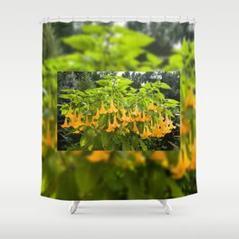 Yellow Brugmansia or Angels Trumpets Shower Curtain
