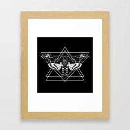 Death's Head Hawkmoth Framed Art Print