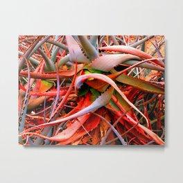 Red Aloe Metal Print