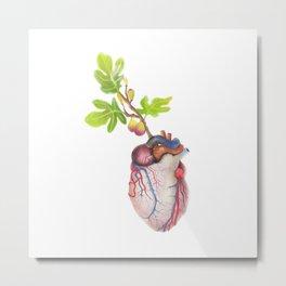 Fig Heart Metal Print