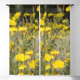 Field Flora Blackout Curtain