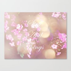 Stuff and Things Canvas Print