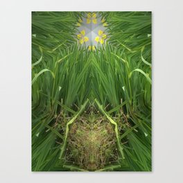 Butterfly Nest Canvas Print