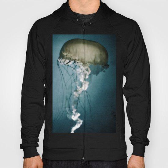 Sea Lantern Hoody