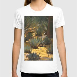 Palo Brea Flowers Covering Agave at Sunnyland T-shirt