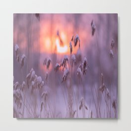 Snowy Reeds Sunset Purple Tone #decor #society6 #homedecor #buyart Metal Print