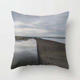 A Sea Wall Throw Pillow