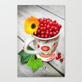 A cup of red currents II Canvas Print