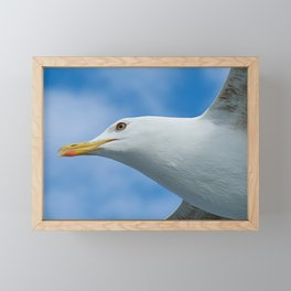 Gull Framed Mini Art Print