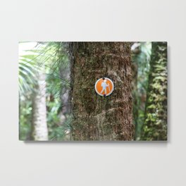 Florida Hike  Metal Print