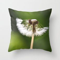 My Interrupted Wish Throw Pillow