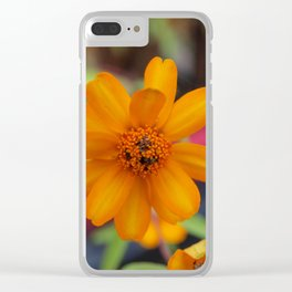 Zinnia Starbright Clear iPhone Case