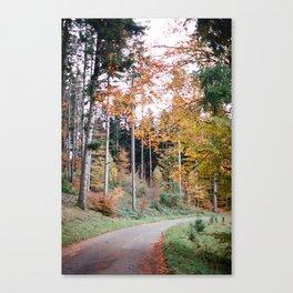 SWISS TRAIL Canvas Print