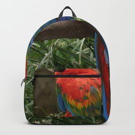 Scarlet Macaws Backpack