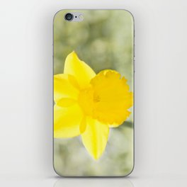 I wandered lonely etc. etc. iPhone Skin