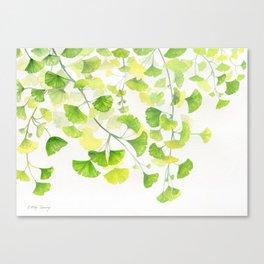 Ginkgo Watercolor  Canvas Print
