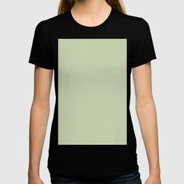 Plain Solid Color Seafoam Green T-shirt