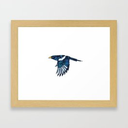 Yellow-billed Magpie Framed Art Print