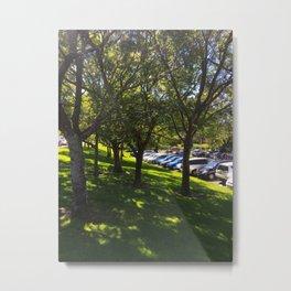 Carpark Trees Metal Print